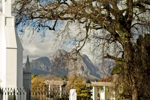 IMG_6474_Stellenbosch_Vincent_Raffray_Culture-fixcom